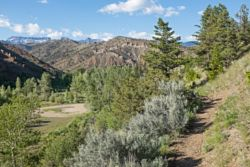 Elks Fork Trail
