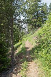 Pahaska Trailhead
