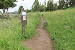Yellowstone River Picnic Area Trailhead