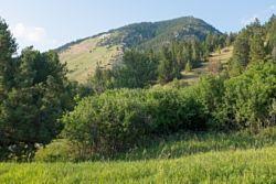 Drinking Horse Mountain Trailhead