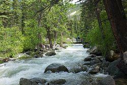 Woodbine Falls Trail