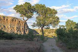 Paul Stock Nature Trail