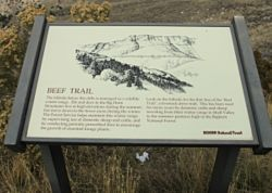 Beef Trail / Copman's Tomb Observation Site