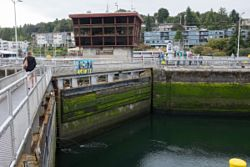 Chittenden Locks Viewpoint