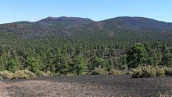 Cinder Hills Overlook
