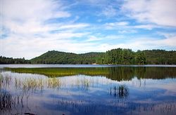 Brown Tract Pond Campground