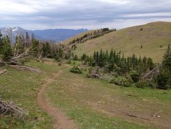 Windy Mountain Trail