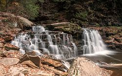Cayuga Falls
