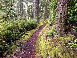 Purisma Creek Redwoods Trailhead