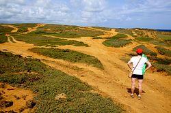 Papakōlea Green Sand Beach Access