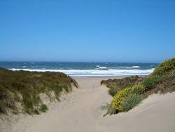 Kehoe Beach Access