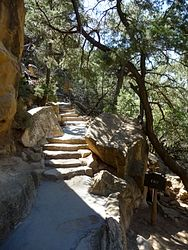 Cliff Palace Overlook Trail