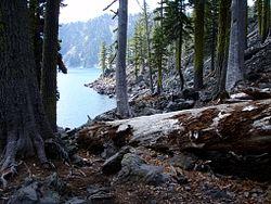 Fumarole Bay Trail