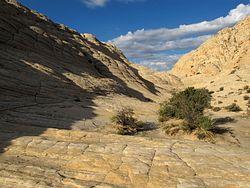 White Rocks Overlook Trail