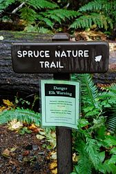 Spruce Bottom Nature Trail
