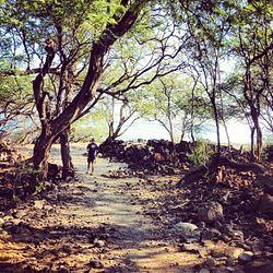 Kīholo State Park Reserve Beach Access