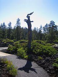 Lava Cast Forest Interpretive Trail
