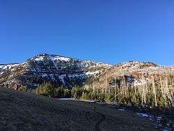 Onion Creek (F H) Trail