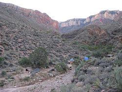 Grapevine Camp