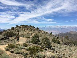 Sierra View Overlook