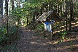 Cascade Head Upper Trailhead