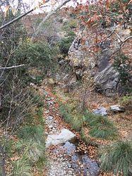 Bud Gode Nature Trail