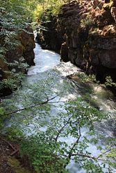 Upper Rogue River Trail