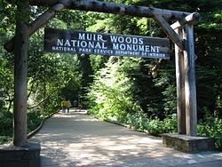 Muir Woods Trailhead