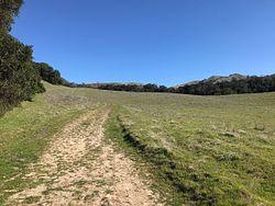 Hayfield Road Trail