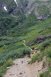 Fuller Lake Trail