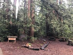 Old Church Group Picnic Site