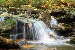 Ramsey Cascades Trail