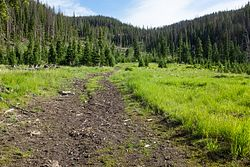 Wind River Divide Trail