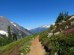 Sahale Arm Trail
