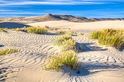 Killpecker Sand Dunes