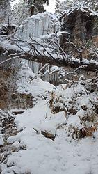 Jessie Weaver Trail