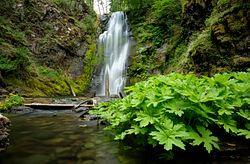 Chinook Falls
