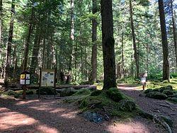 Paradise Park Trailhead